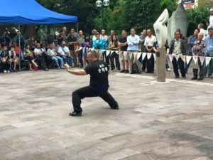 photo of a martial artist demonstrating a lai tung pai kung fu form